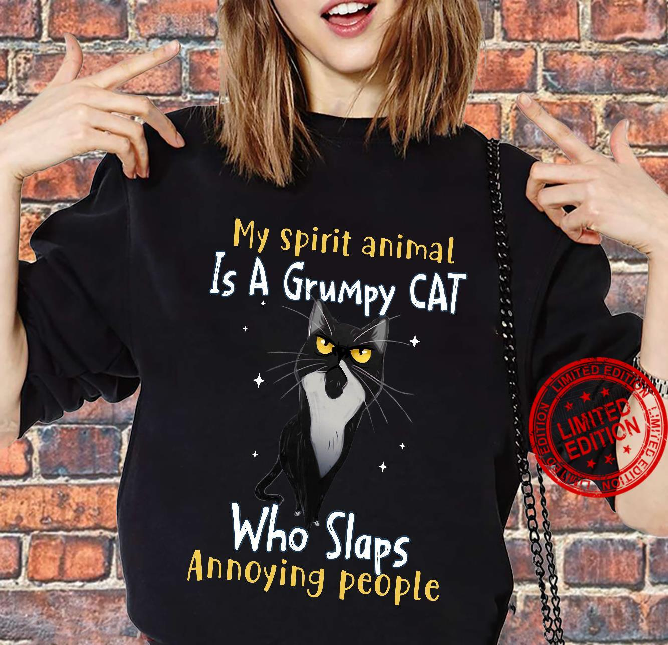 My Spirit Animal Is A Grumpy Cat Who Slaps Annoying People Shirt sweater